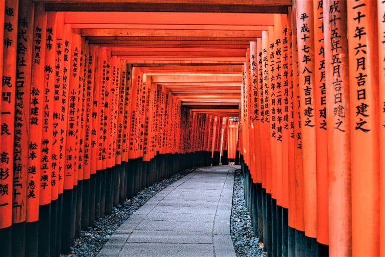 Torii shrine gates in Japan. Wanna learn Japanese? Check out our review of Rocket Japanese, the best Japanese language learning software!