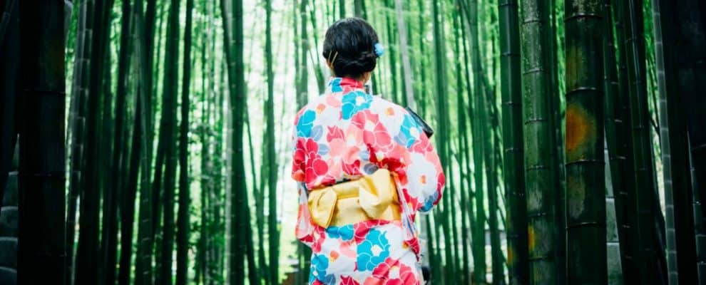 kimono girl in bamboo forest - japanese for beginners