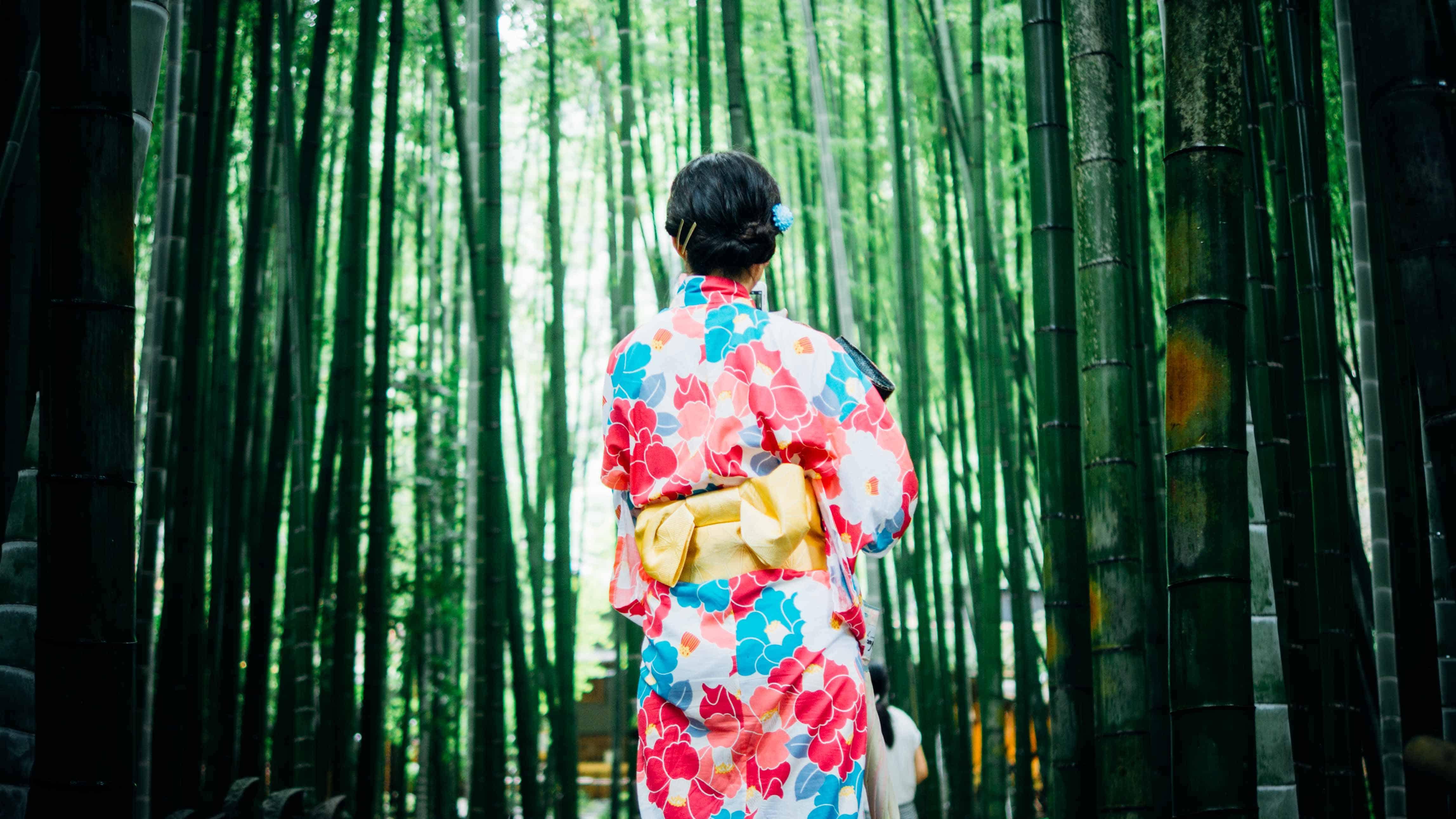 kimono girl in bamboo forest - japanese for beginners