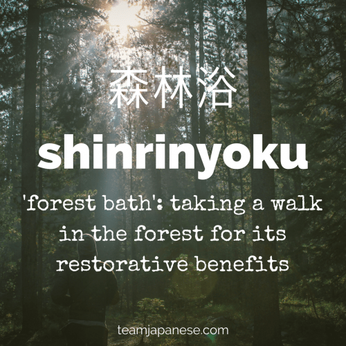 12 Beautiful And Untranslatable Japanese Words Team Japanese