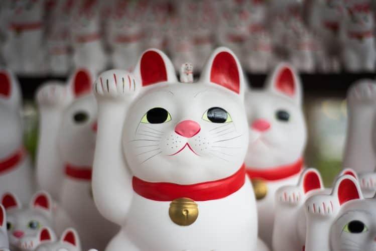 best way to learn japanese online - maneki neko cats in Japan
