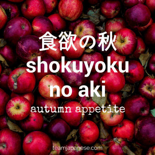 shokuyoku no aki - the Japanese word for autumn appetite. Seasons are very important in Japan. Japanese people honour the changing seasons with special food, drink, festivals and customs. And of course, there are special seasonal words too! Increase your Japanese vocabulary with this list of Japanese words and phrases for autumn and fall. Click through to the blog post on Team Japanese to learn more autumn Japanese words now!
