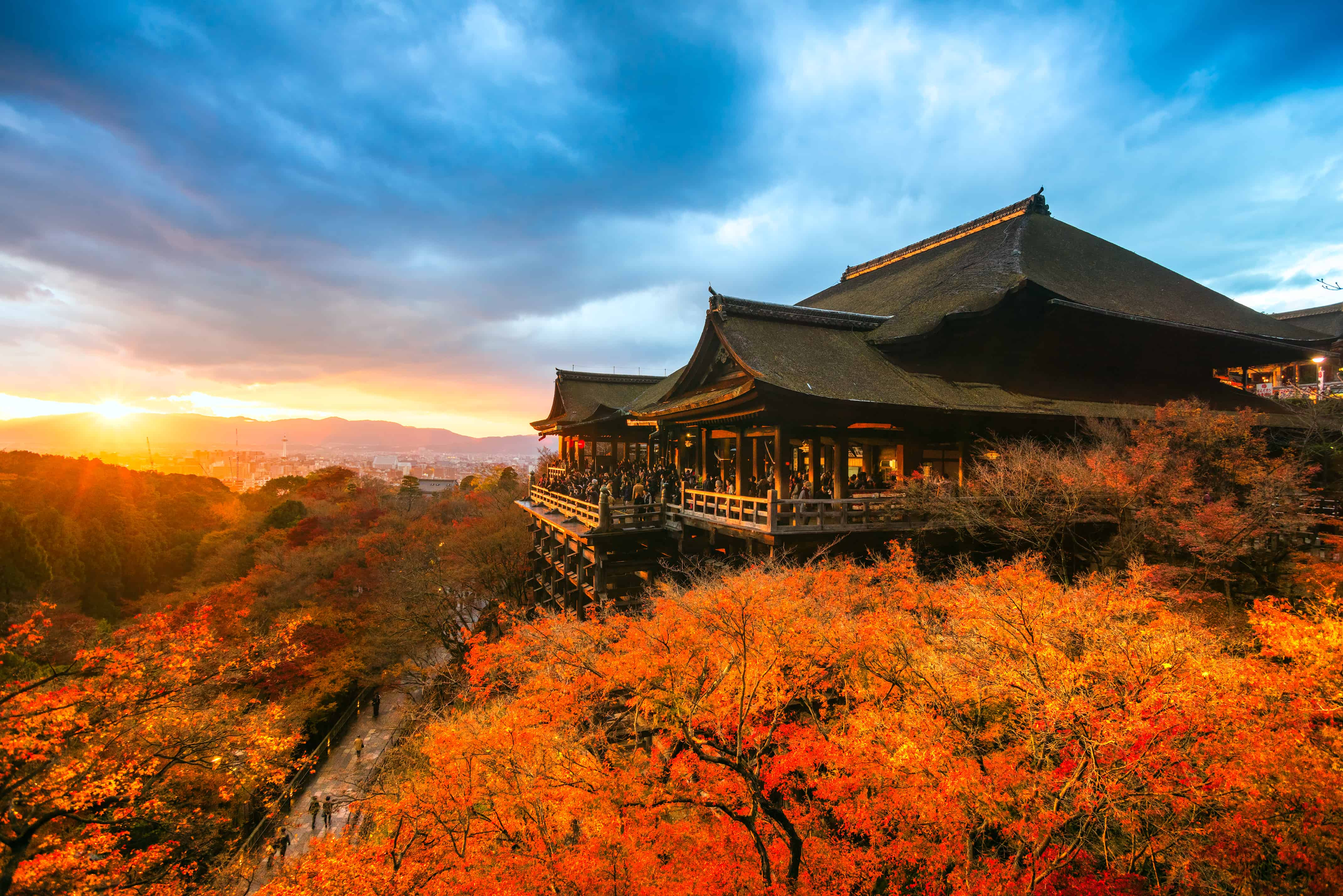 9 Beautiful Japanese Seasonal Words for Autumn