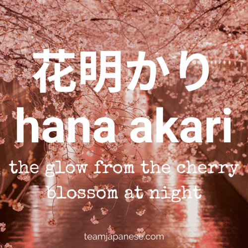hana akari - cherry blossom glow. More essential Japanese words for spring at teamjapanese.com!