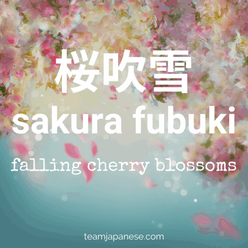 sakura fubuki - a cherry blossom snowstorm.More Japanese spring words at teamjapanese.com!