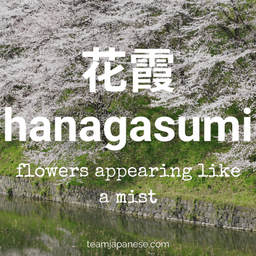 hanagasumi - a word for when cherry blossom flowers look like a white mist. For more Japanese seasonal words for Spring, click through to teamjapanese.com!